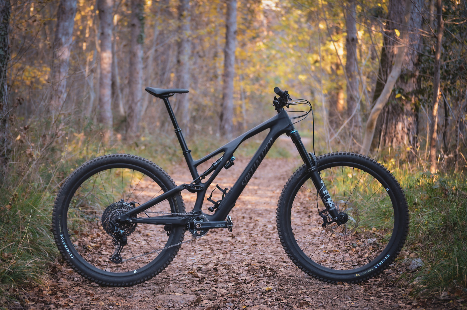 Full Carbon Stumpy Evo 2021