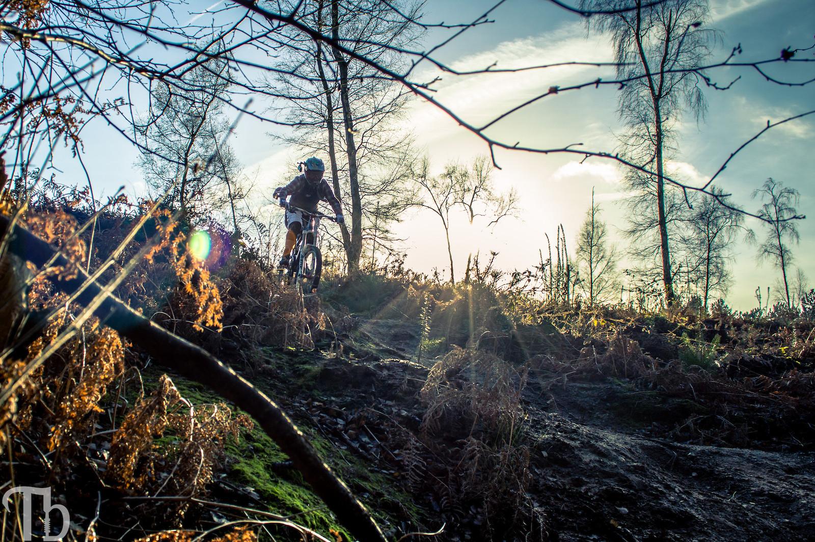 Sunflare Kalula - KillerXL5 - Mountain Biking Pictures - Vital MTB