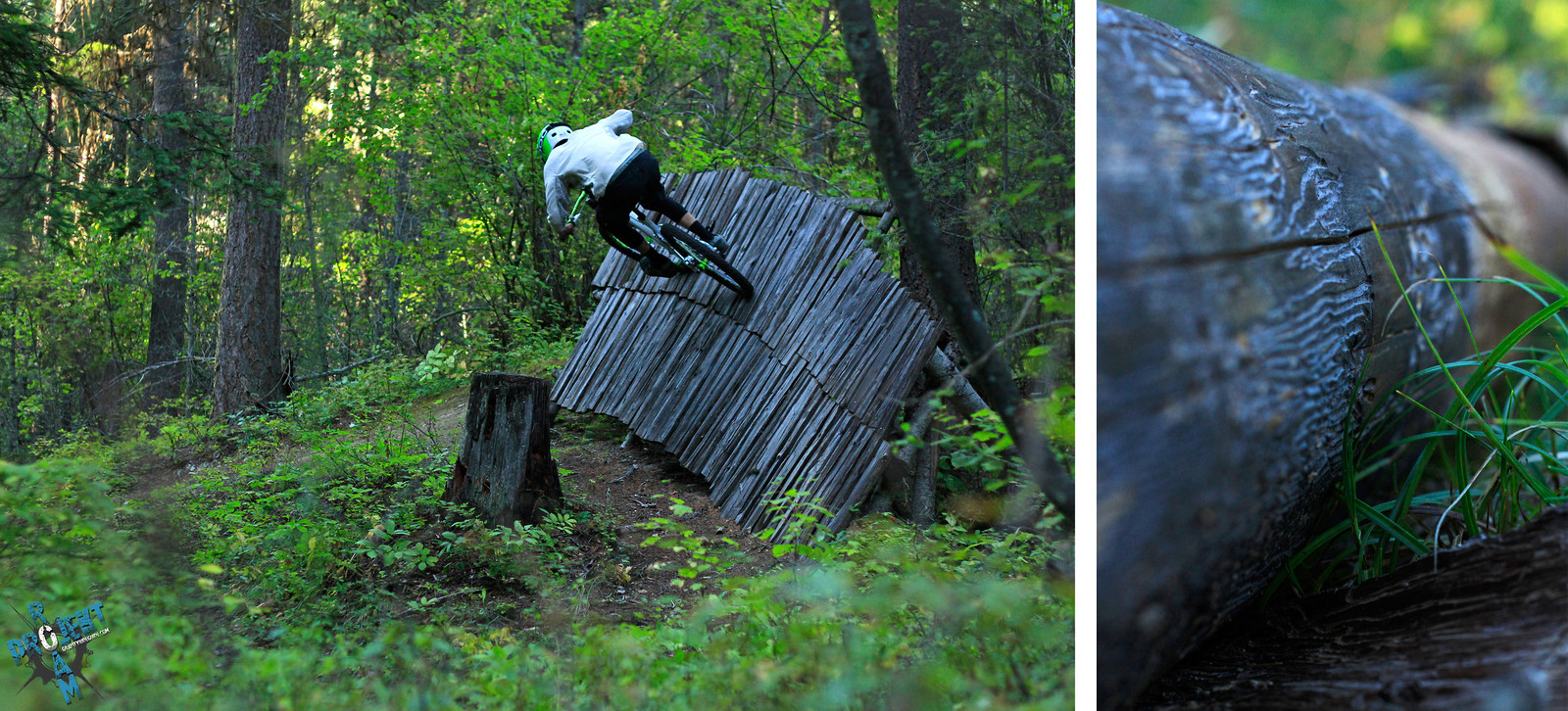 Whitefish, MT - projekt roam - Mountain Biking Pictures - Vital MTB