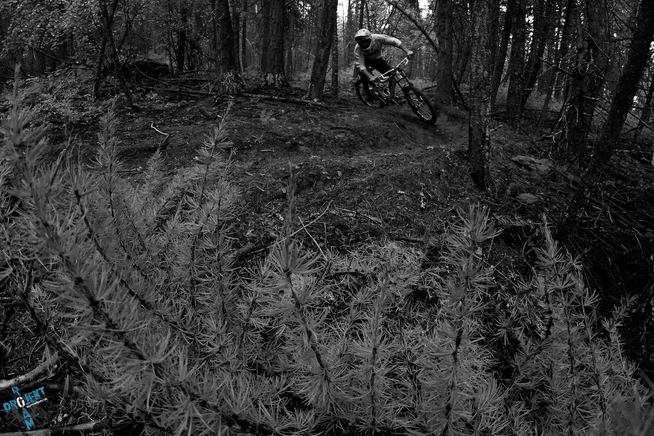 Colt Maule in Whitefish, MT - projekt roam - Mountain Biking Pictures - Vital MTB