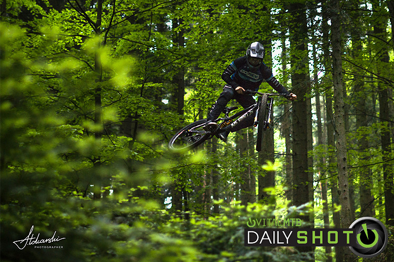 Straight from the tree - toca1992 - Mountain Biking Pictures - Vital MTB