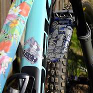 Flower Fuel (Trek Fuel EX Carbon Custom)