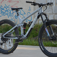 Trek Remedy 9.8 2019