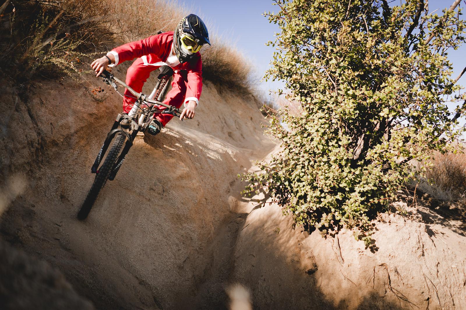 DSC08646 - sammcneesphotography - Mountain Biking Pictures - Vital MTB