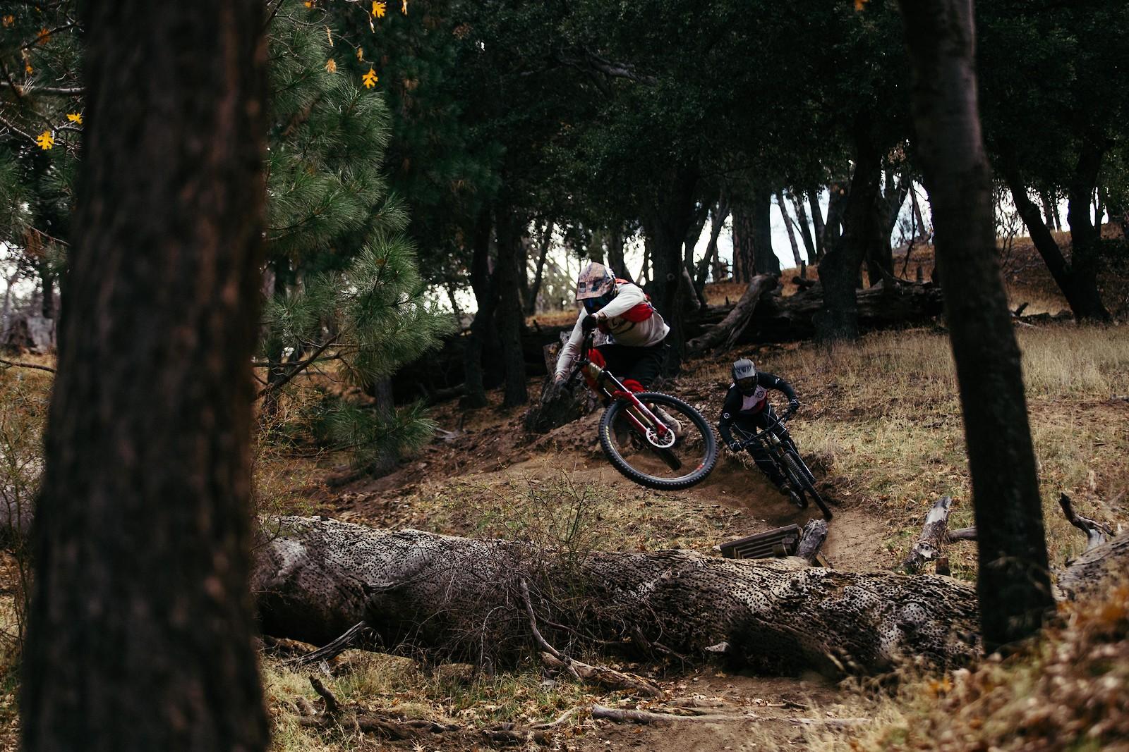 MG 48453 - sammcneesphotography - Mountain Biking Pictures - Vital MTB