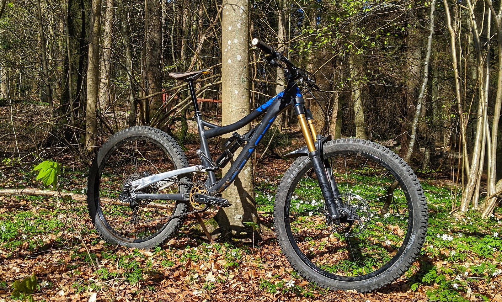 The Alutech Fanes 5.0 Race Ready model in all it's glory with 180mm travel front and back.