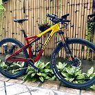 WheelWorks Specialized Epic Expert Trail Spec Custom