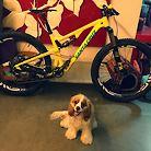 Santa Cruz Tallboy 3+ With Cookie