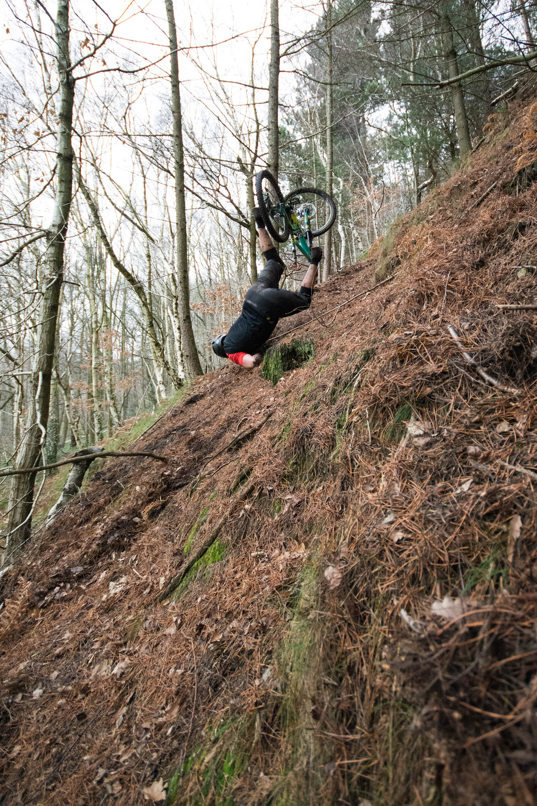 DSC 2237 - 89dn11 - Mountain Biking Pictures - Vital MTB