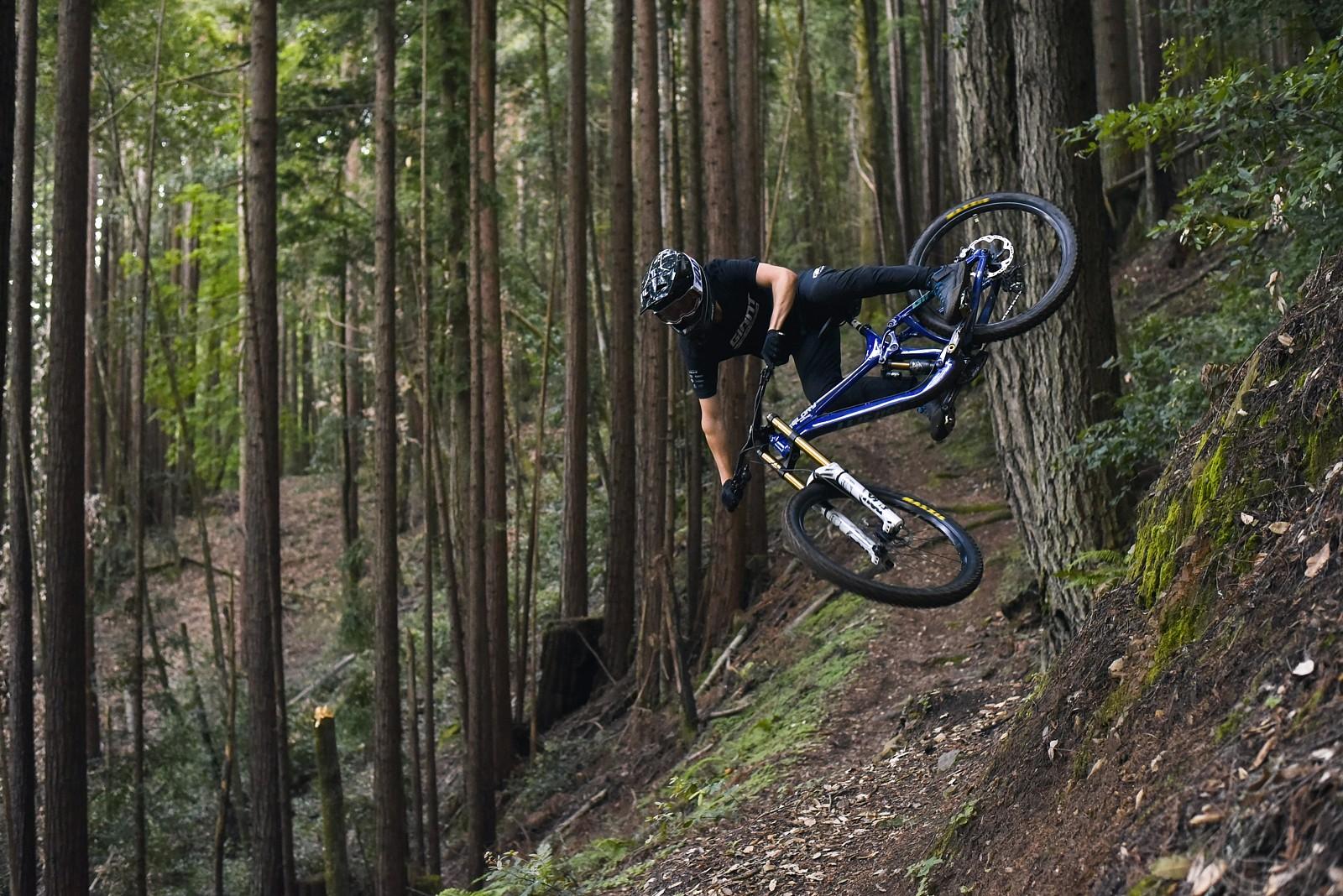 IMG 8239 - Dono_Francis - Mountain Biking Pictures - Vital MTB