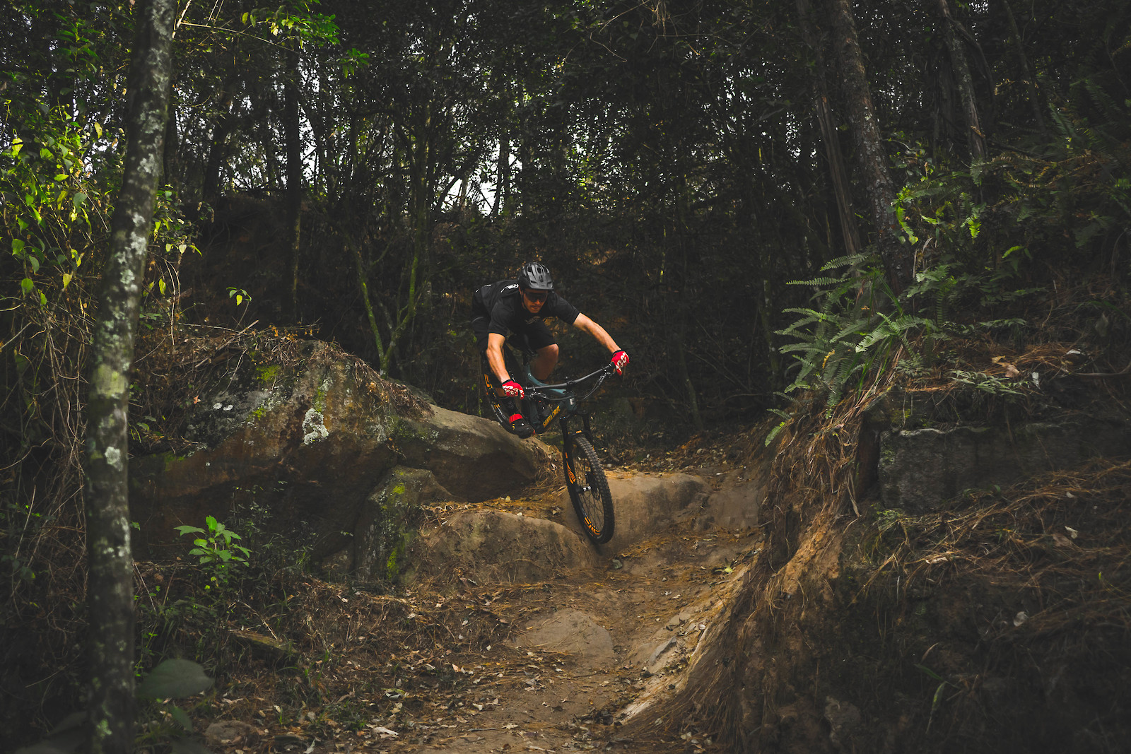 Jungle Drops - Its.Peteee - Mountain Biking Pictures - Vital MTB