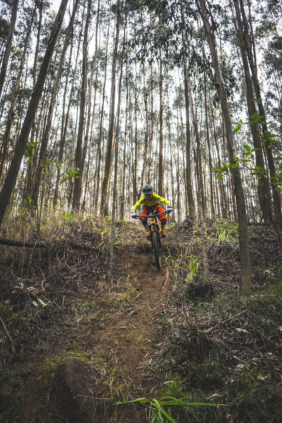 Bombing - Its.Peteee - Mountain Biking Pictures - Vital MTB