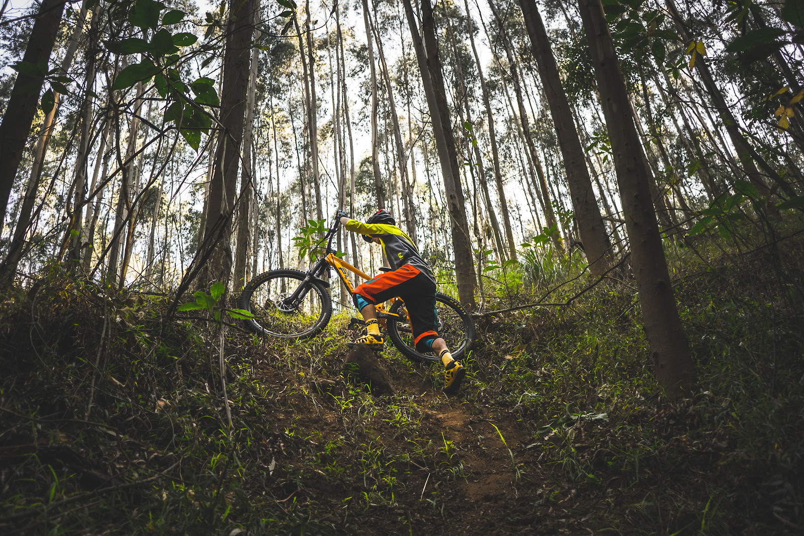 The Climb Back Up - Its.Peteee - Mountain Biking Pictures - Vital MTB