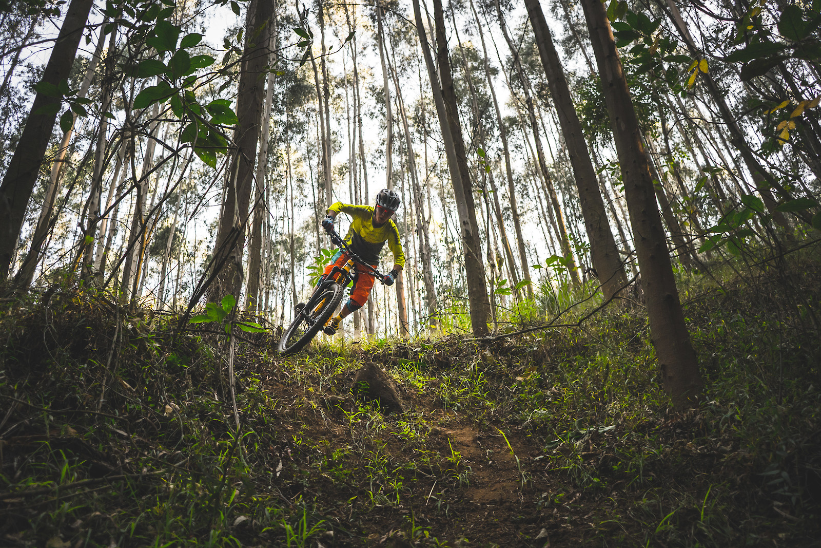 The Set Up pt 2 - Its.Peteee - Mountain Biking Pictures - Vital MTB