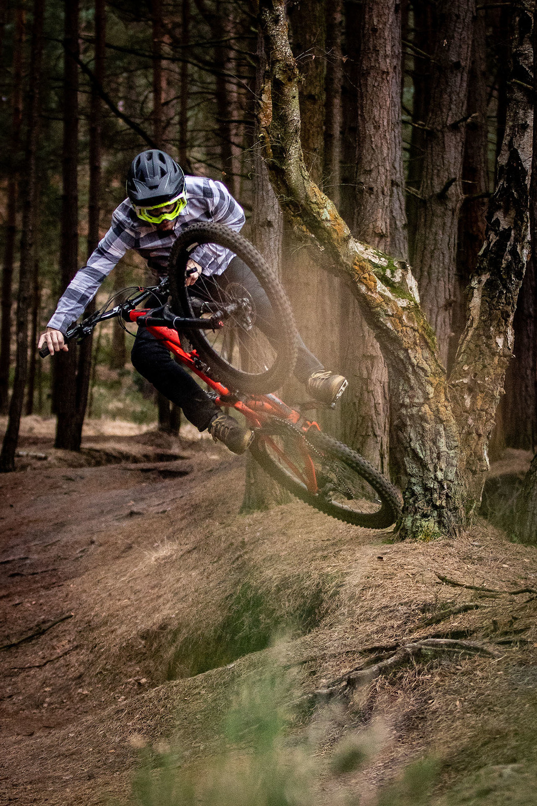 Front tire check - cagreenwood - Mountain Biking Pictures - Vital MTB