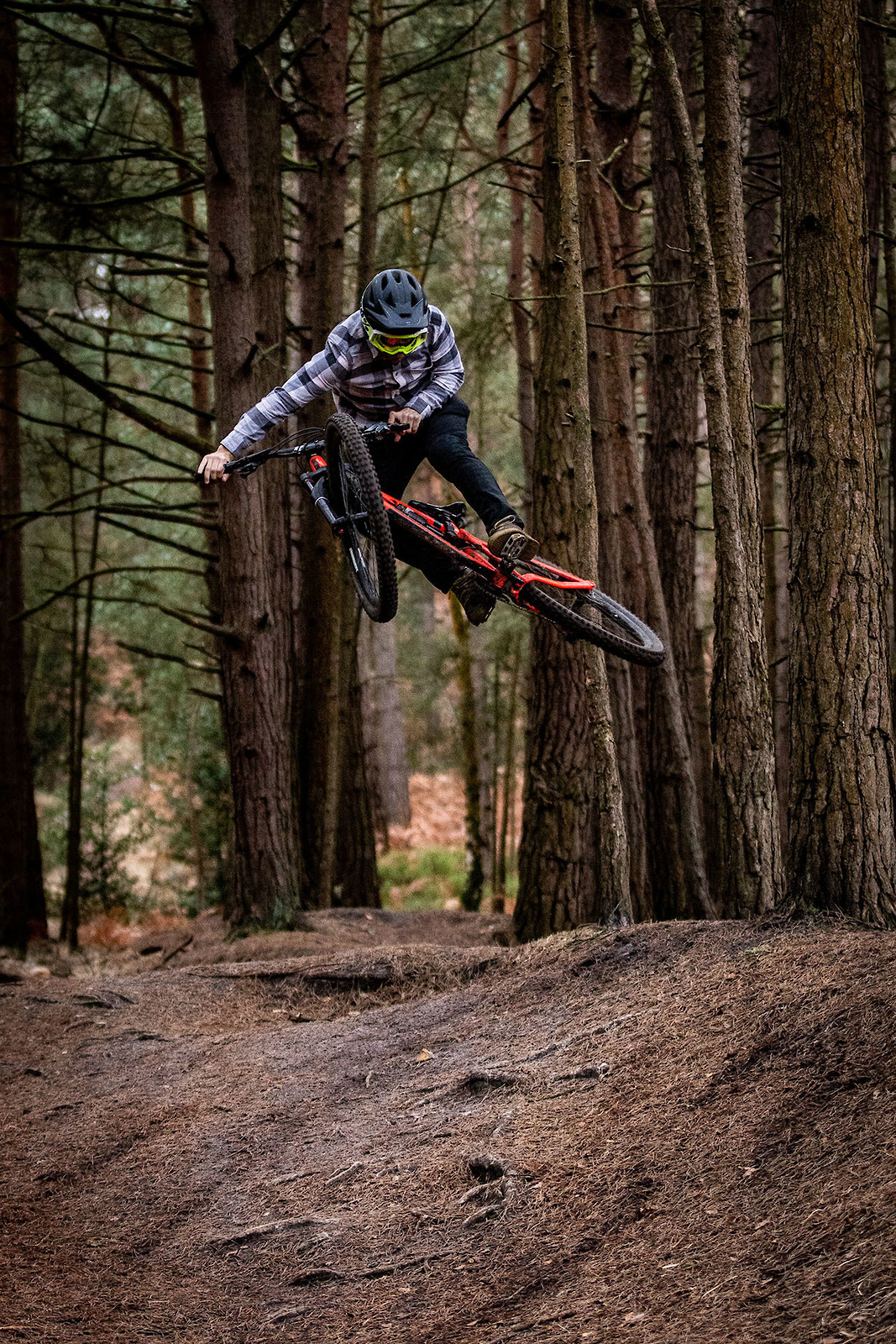 Half Table Half Whip thing - cagreenwood - Mountain Biking Pictures - Vital MTB