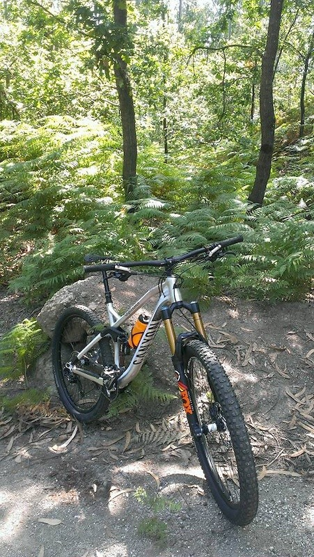 Spectral AL 6.0 - Kashima - doomage - Mountain Biking Pictures - Vital MTB
