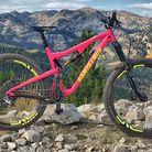 Pink bike 2016 Bronson 2