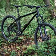 C186_ns_bikes_eccentric_cromo_29_43ride_1