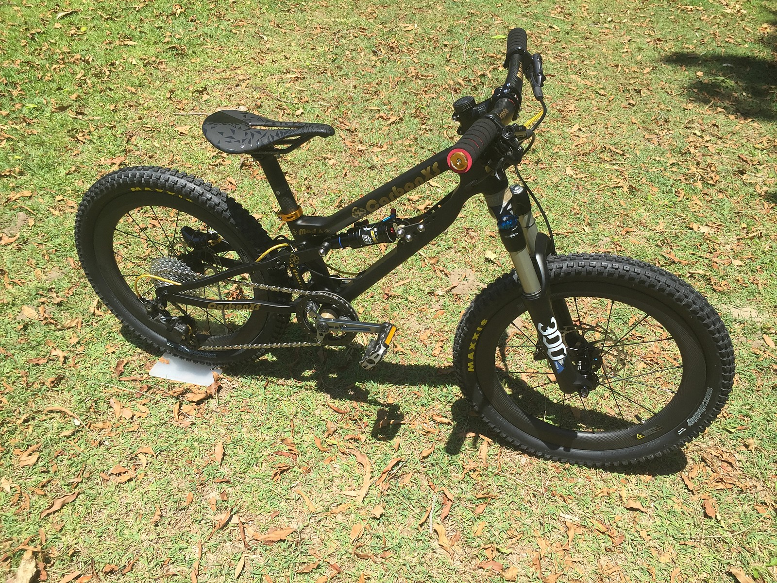 IMG 4187 - CarbonXScycles - Mountain Biking Pictures - Vital MTB