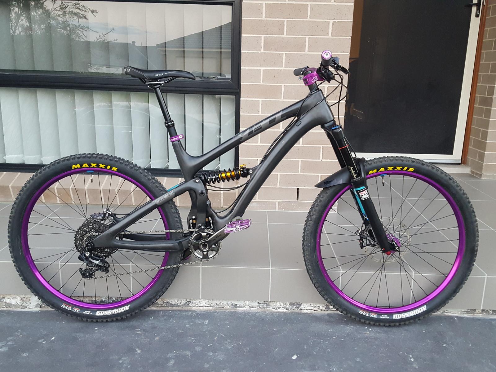 SB6C- The Big Purple Warrior