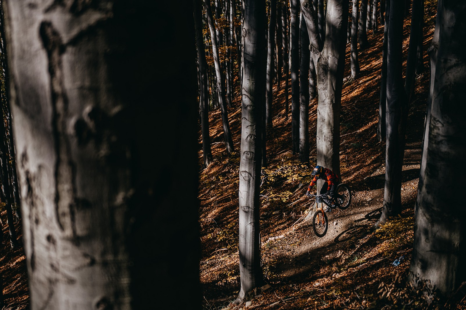 750EA322-7BDD-48B9-8300-E5ED4DC1B9C1 - Arczii95 - Mountain Biking Pictures - Vital MTB