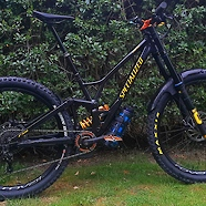 Specialized E-Demo