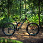 Transition TR11 Custom