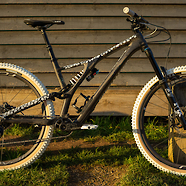 Specialized Stumpjumper EVO Carbon - Mono edition