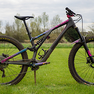 2021 Specialized Stumpjumper Evo LTD  - Pinky Boy