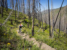 SCOTT Enduro Cup Gears up for Sun Valley
