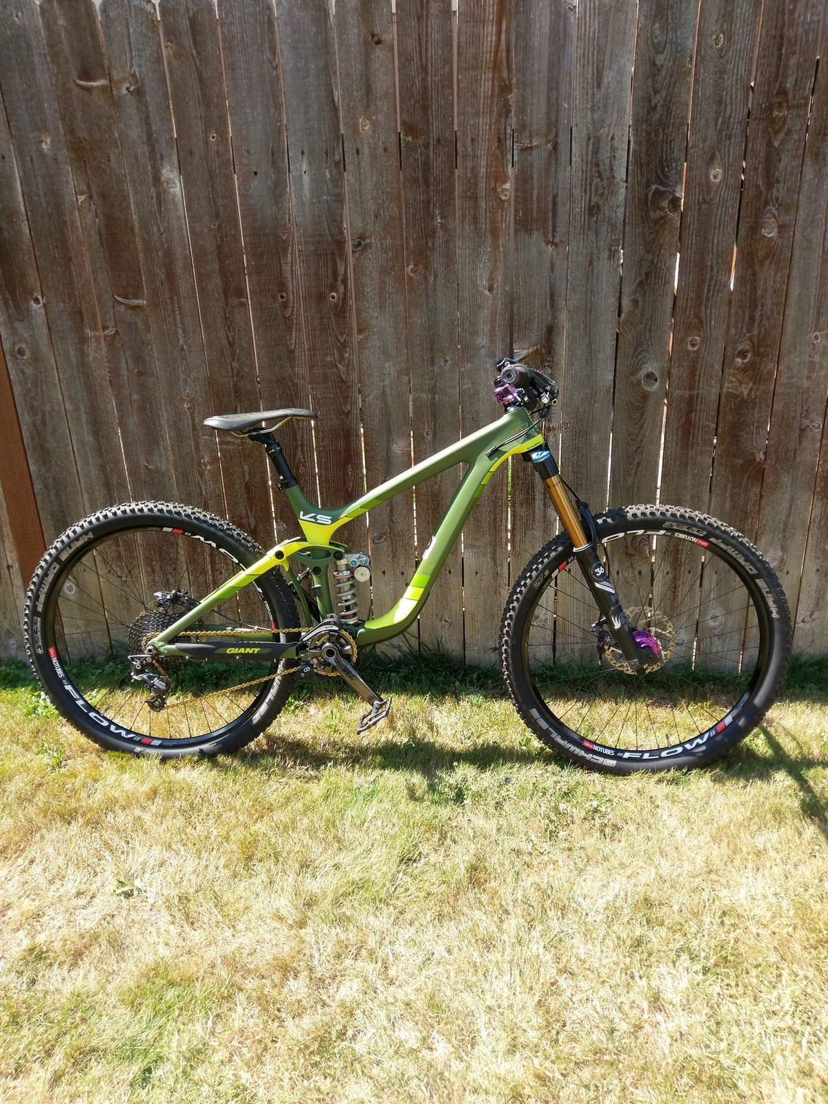 Pushed Giant Reign carbon