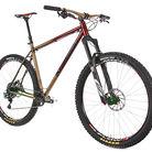 C138_adam_bike_2
