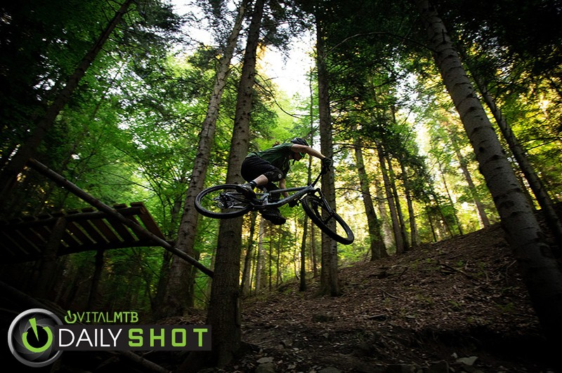 Power of Forest - JUZIO - Mountain Biking Pictures - Vital MTB