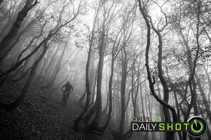 Scary Lines - EWIA - Mountain Biking Pictures - Vital MTB