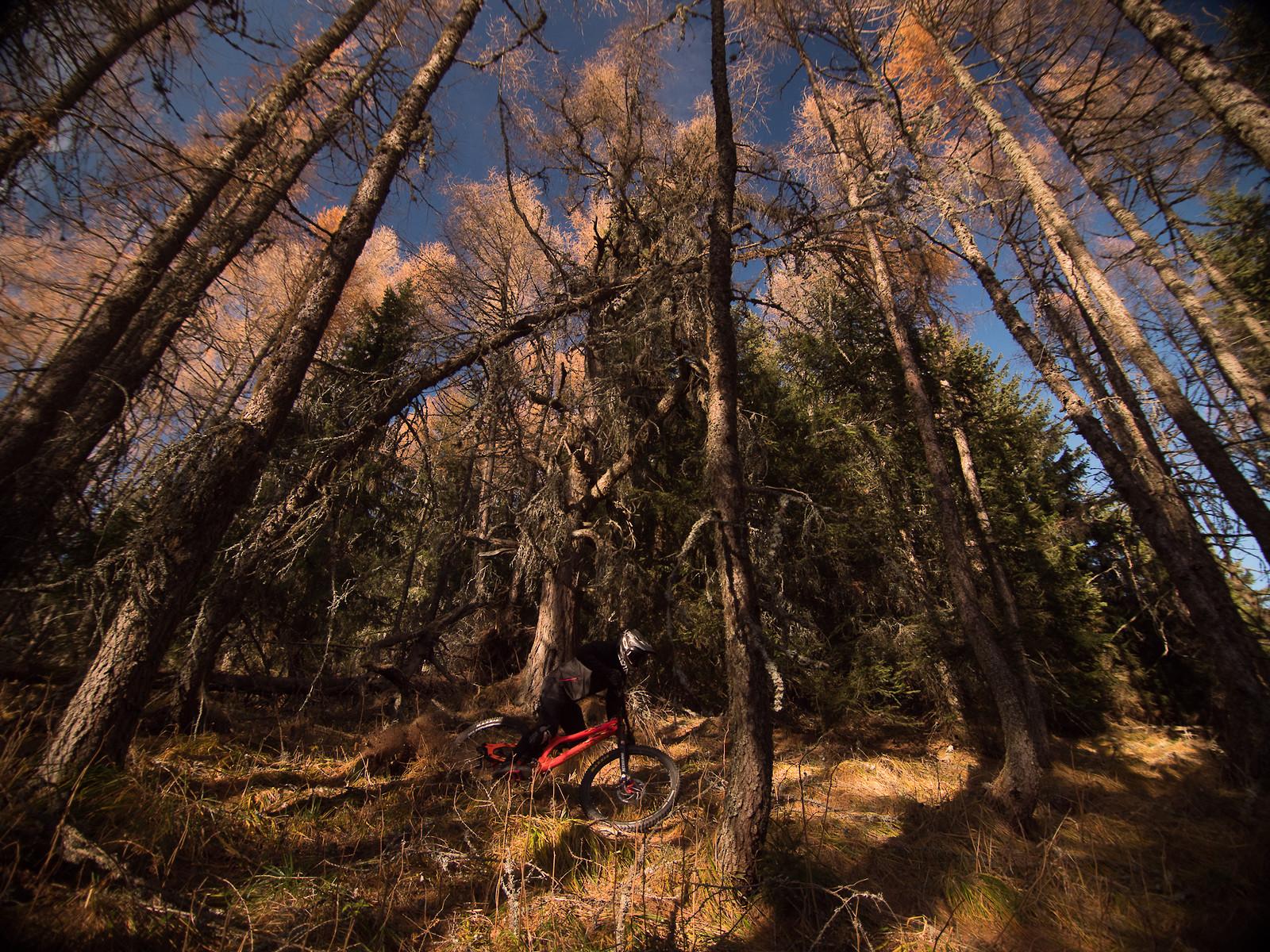 Pure Nature - EWIA - Mountain Biking Pictures - Vital MTB