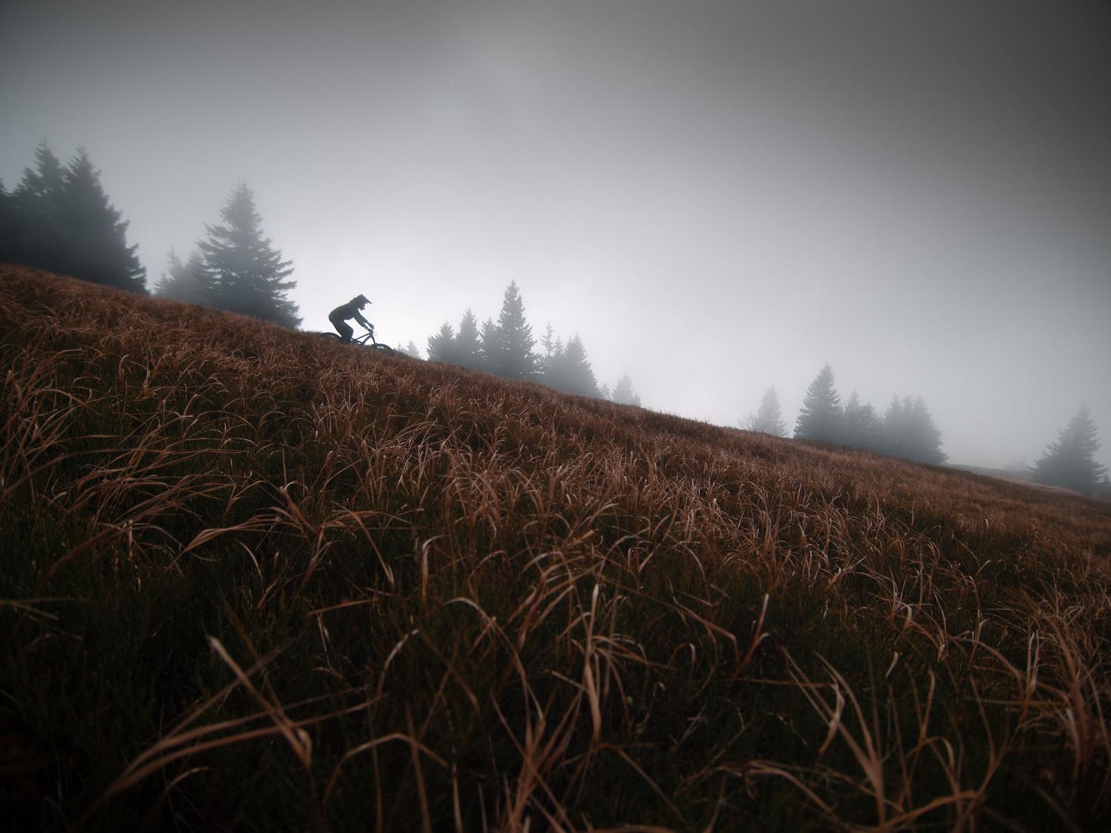Autumn ride - EWIA - Mountain Biking Pictures - Vital MTB
