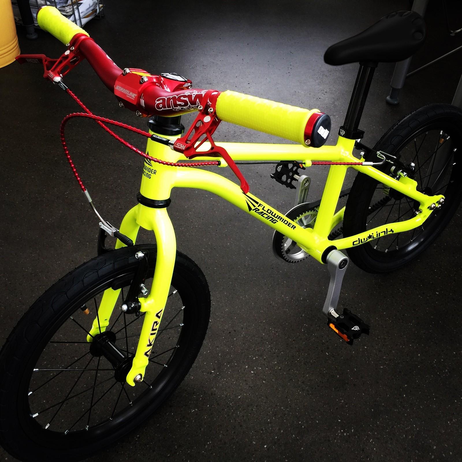 Flowrider Racing Custom Kids Bike