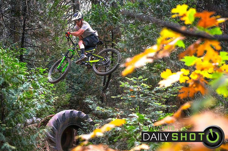 Whips of Gold - shreddyshots - Mountain Biking Pictures - Vital MTB
