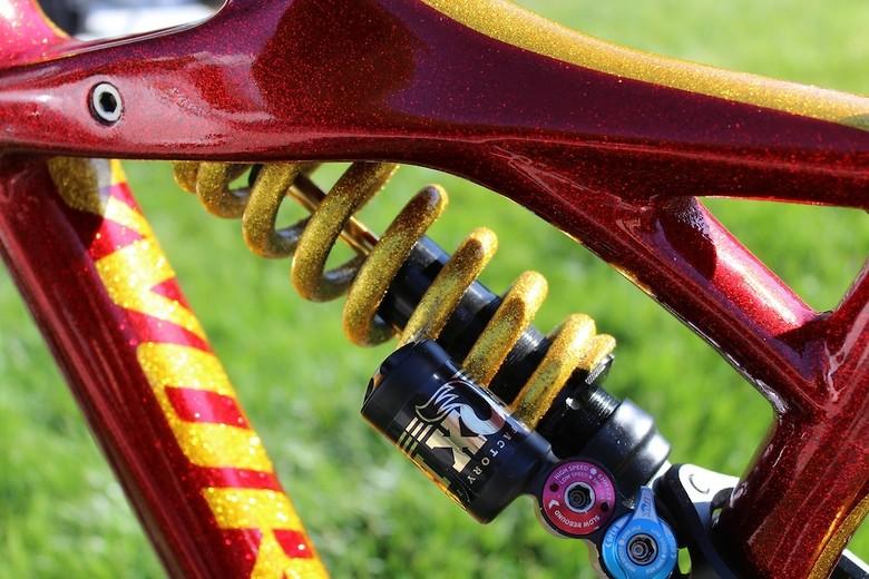 Vicious Cycleworx's Wild Metal Flake  S-WORKS Enduro