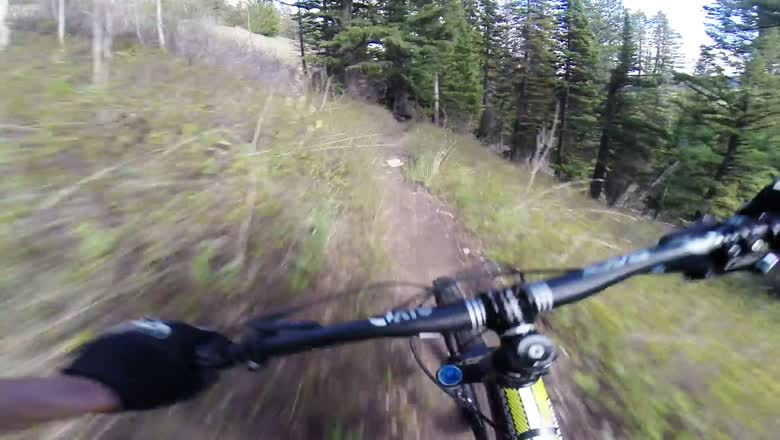 Parallel Trail Raw | Jackson, WY with Fast Dog and Chest Gimbal