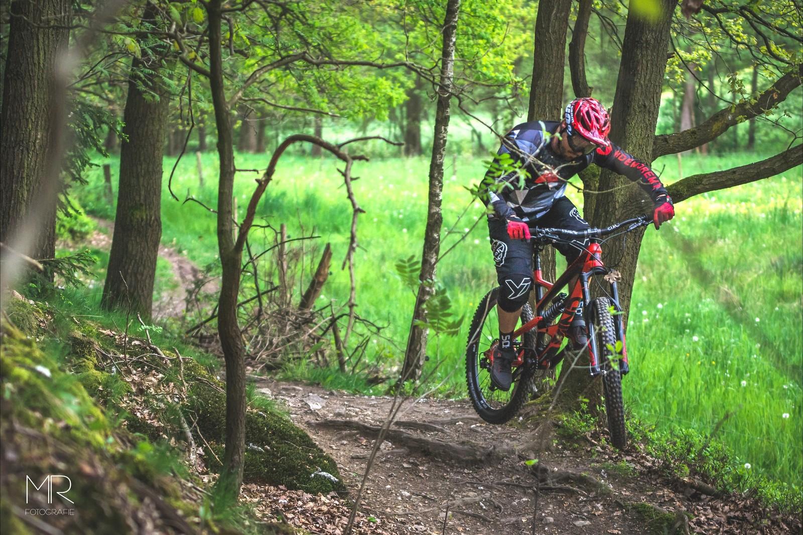 Plotzschgrund  - tomflemmig - Mountain Biking Pictures - Vital MTB