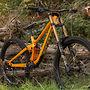 wild bike !
