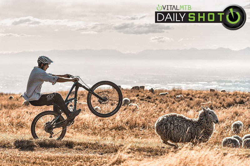 Summers Last Group Shred - specializedphotog - Mountain Biking Pictures - Vital MTB