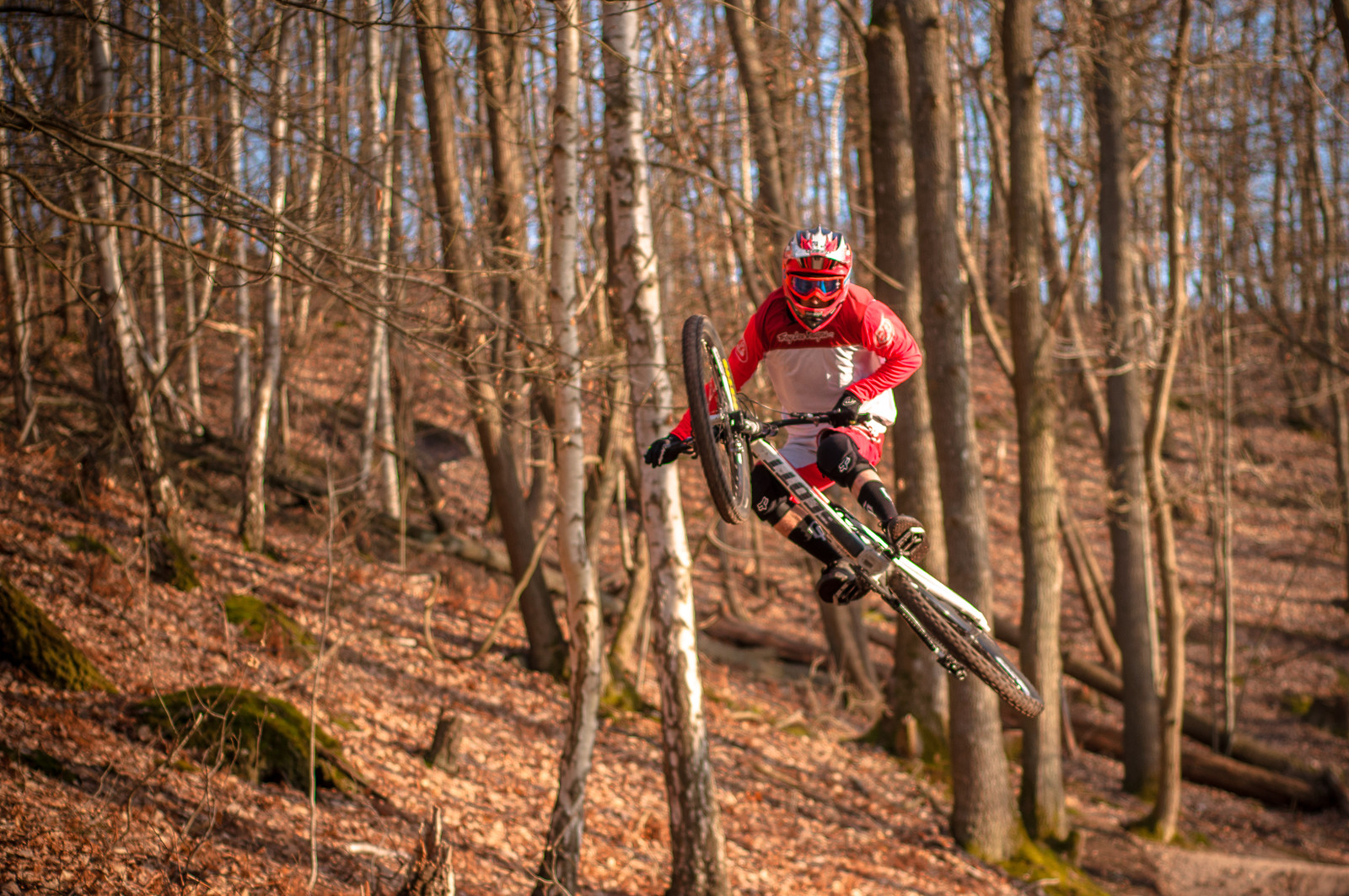Whip it  - Romuald_Manach - Mountain Biking Pictures - Vital MTB