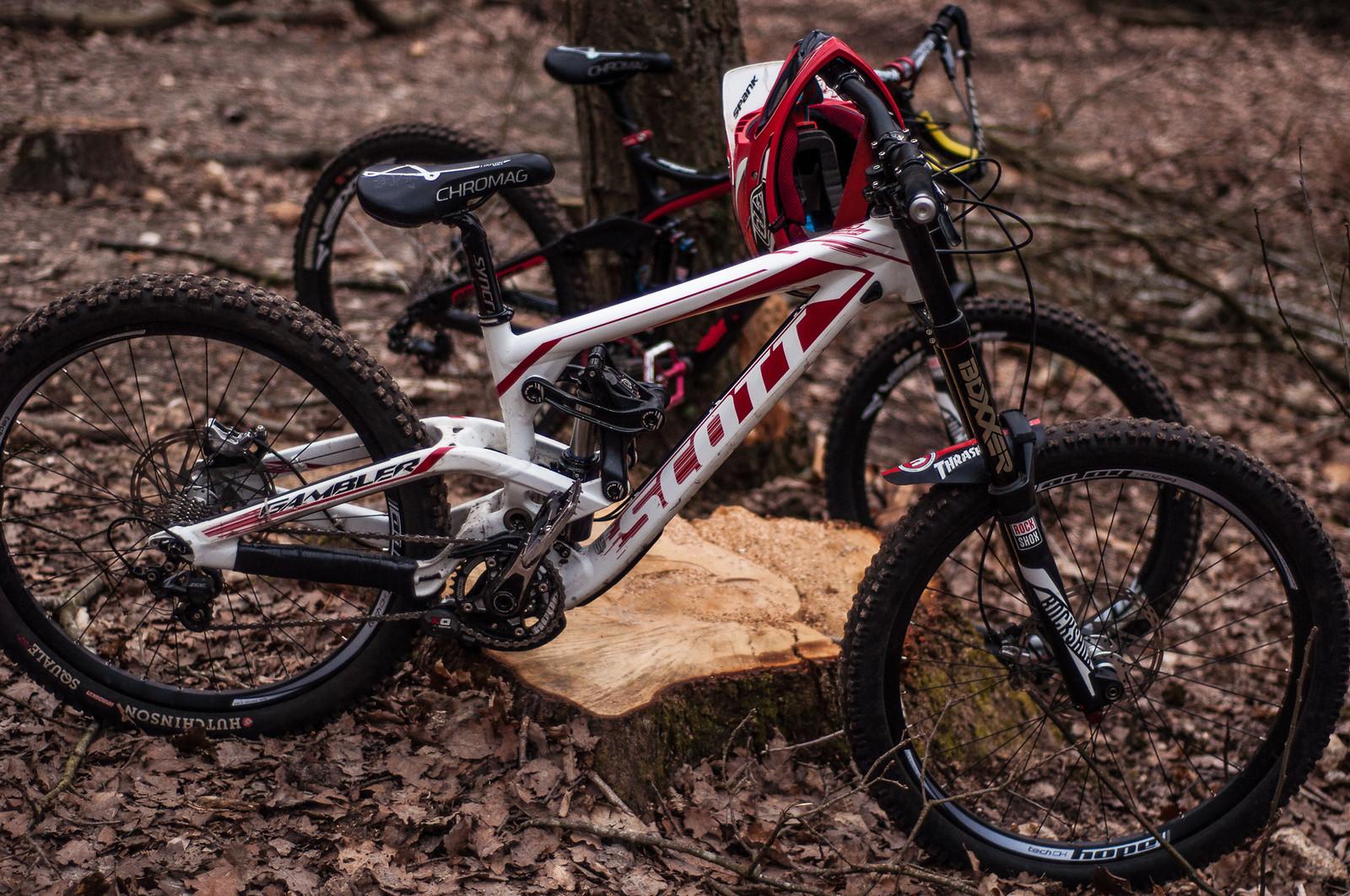 The beast  - Romuald_Manach - Mountain Biking Pictures - Vital MTB