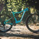 C138_martin_bike_check_1