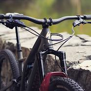 SWORKS Stumpjumper 2020
