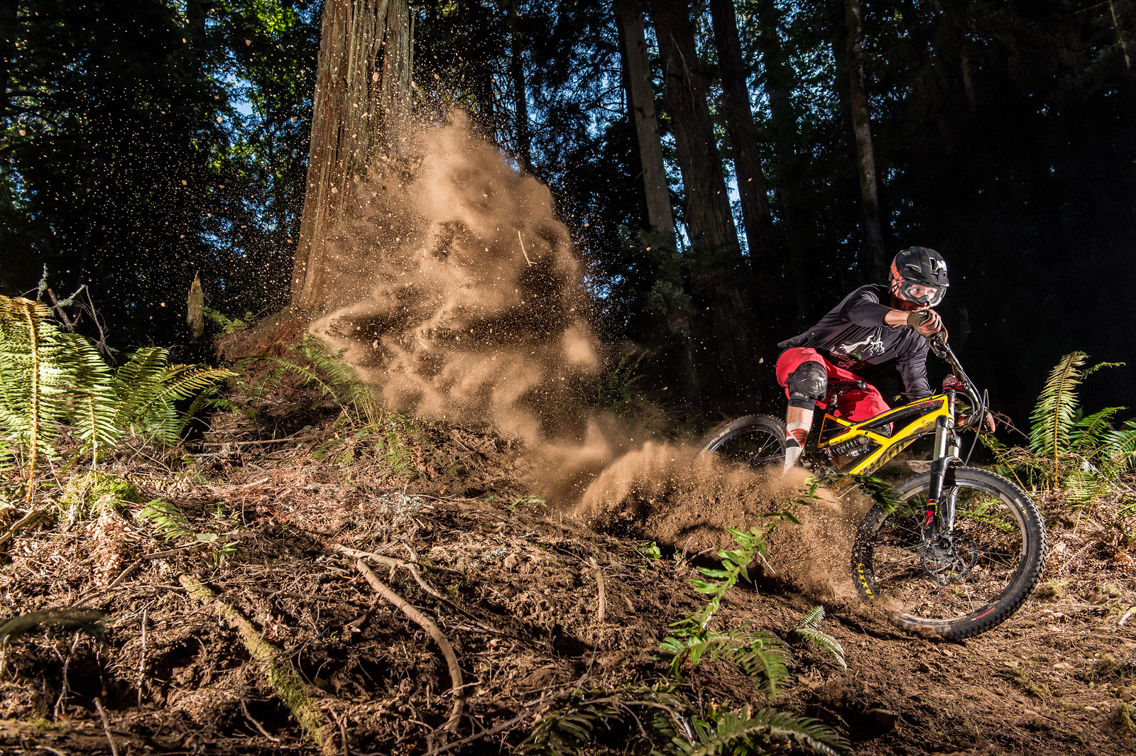Exploder - Dobbs - Mountain Biking Pictures - Vital MTB
