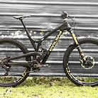 Evil Wreckoning Black Gold